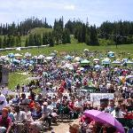 crowd on the hill during the festival