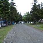 View as you enter
