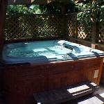 Outdoor hot tub at An Ocean View Bed and Breakfast in Victoria
