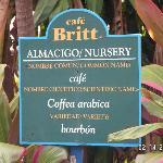 Cafe Britt Entrance