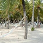Hammocks at Xel-Ha