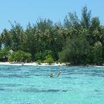 island in moorea