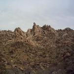 Carey's Castle