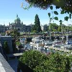 And Victoria is gloriously in bloom in summer time!