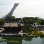 Olympic stadium - view from the gardens