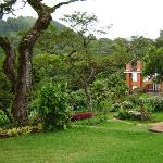 Kuchawe Inn Garden