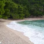 beach outside hotel marina
