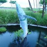 Bronze whale statue in koi pond