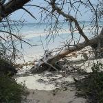 Beach at Lucayan National Park