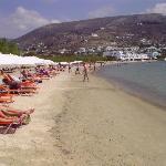 The beach close to Alkyon Hotel