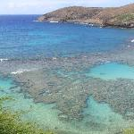 Hanauma Bay Nature Preserve ภาพถ่าย