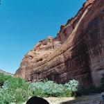 The canyon walls