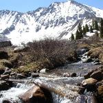 Mayflower Gulch in June