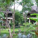 some villas