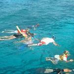 Looe Key (Florida Keys National Marine Sanctuary) Photo