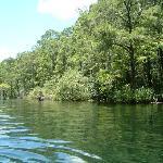 Imagen de Rainbow River