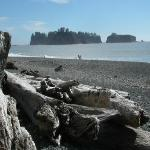 """Sea Stacks"" and driftwood, Rialto Beach close by"
