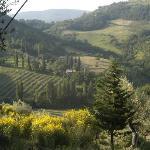 Bild från Le Silve di Armenzano di Assisi