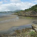 coastal views from woodland walk