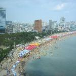Busy Haeundae Beach!  (from 9th floor)
