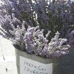 Lavender at Saturday morning market