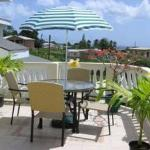 Palm Paradise Guest House + 2 Apartments Photo
