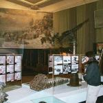 Exhibits about the defense of Leningrad