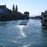 Giant Bedbug Swimming up the Limmat River in Zurich ;<)