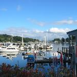 Bilde fra Anthony's HomePort Gig Harbor