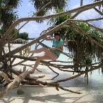 Meeru Island Resort & Spa Photo