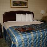 Photo de Hampton Inn and Suites Arundel Mills / Baltimore