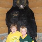 Bear Fans!