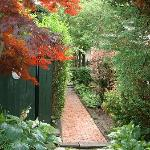 Pathway leading to the Annadale House which houses several b & b rooms