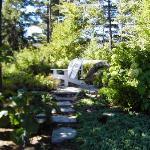 quiet sitting area in perrenial garden
