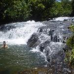 Fresh Water Jungle River