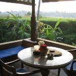 each room has terrace looking onto rice paddies