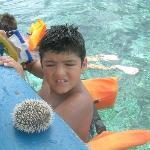 Fun Holiday Beach Resort Photo