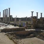 Salamis ruins near Famagusta
