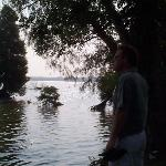 beautiful trees surrounding lake