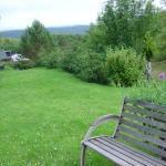 Backgarden