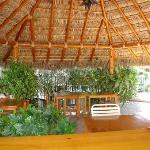 inside of palapa.. perfect for relaxing and a game of cards