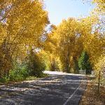 Autumn in Gunnison
