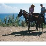 Horseback riding with Lucky Stables