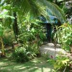 Bocas Inn Resmi