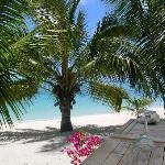 Beach Bar/Restaurant by beach