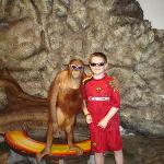 cool, but whos the monkey?