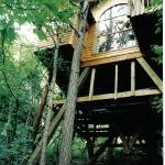 The Hideaway Treehouse