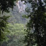 Foto de Khao Sok National Park