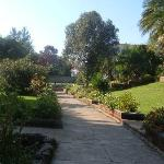 Ghion Gardens