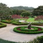 Lodge's Gardens